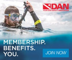 Sign up for DAN Insurance