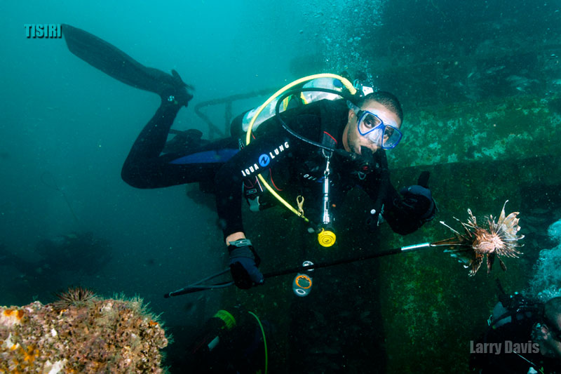 Advancing your Scuba Skills and Rating