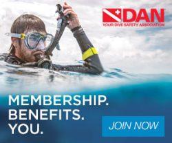 Sign up for DAN Insurance